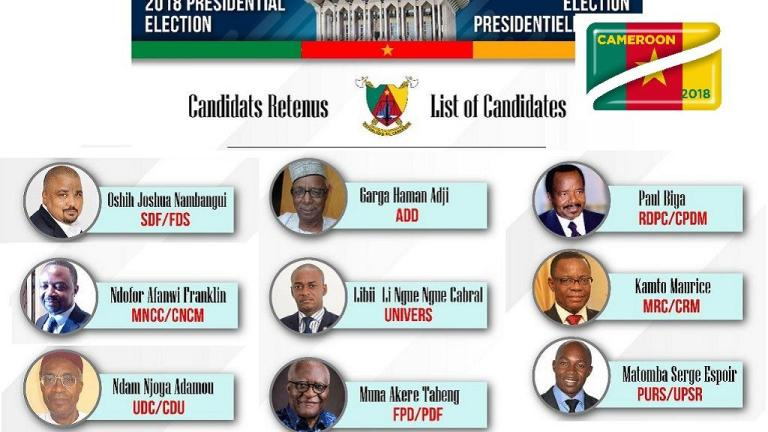elections cameroon